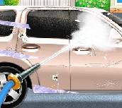 elsa araba yıkama