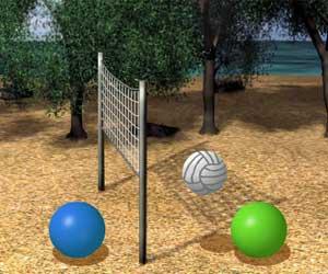 kumsalda voleybol maçı