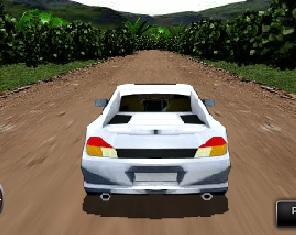 nitrolu araba yarış